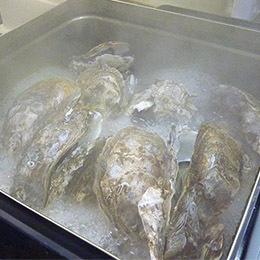 焼き カンカン マルカ 水産 生牡蠣・カンカン焼きセット【送料込】